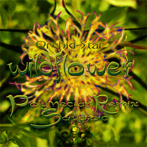 Orchid-Star - Wildflower - Polynectar Remix (Squazoid)
